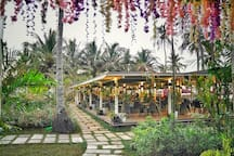 Sunmai Bar 2019 The best Restaurant on the Nacpan Beach