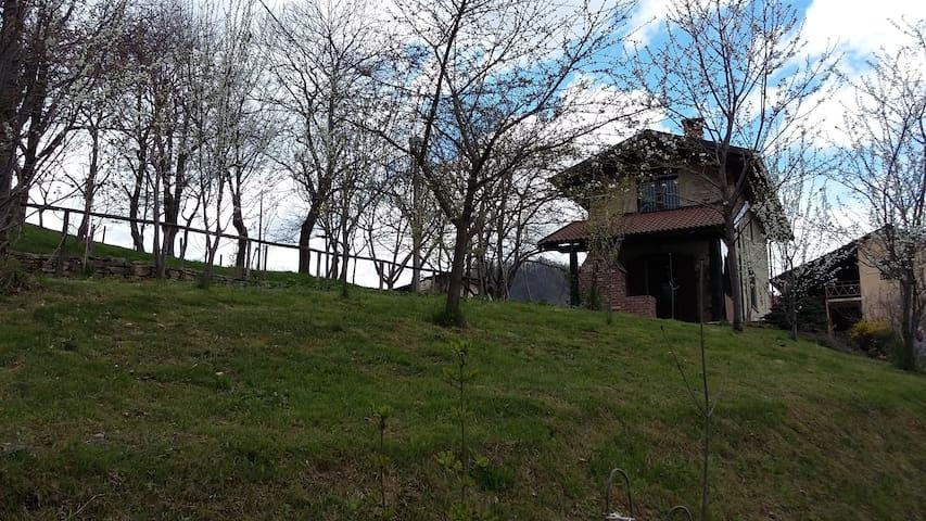 Casa immersa nel verde - Provincia di Cuneo - Casa
