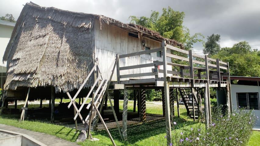 BTV Tribal House