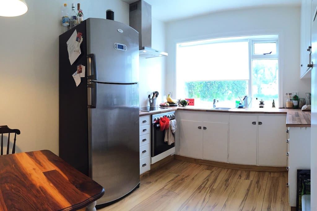 Small kitchen with a large fridge, stove/oven and a small dishwasher.