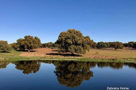 Zebreira Home - An ideal spot to rest