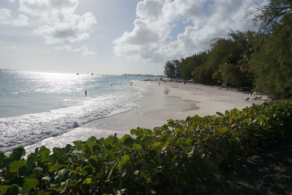 Popular Miami Beach - 5 minutes by car from apartment!