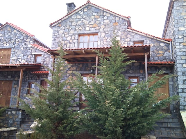 Beautiful stone house in Vitina 2 - Vitina - House