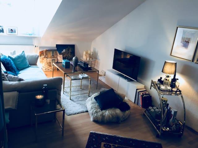 Individuelle/gemütliche City-Wohnung Heidelberg