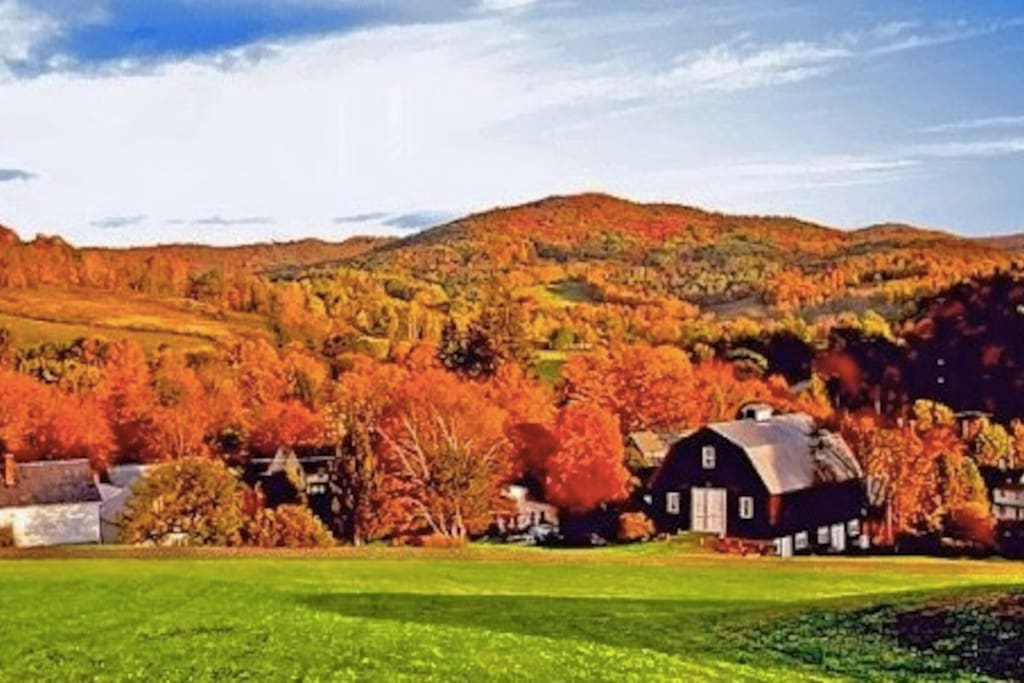 Planning a Fall trip? We get loads of color and are in the perfect spot to take daytrips to Vermont, New Hampshire, Maine and even Cape Cod.