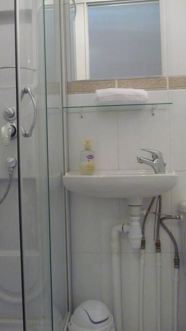 SDB / Bathroom