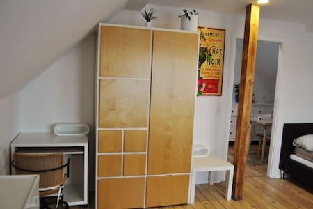 1,5 Zimmer Dachwohnung/Appartement - Ginsheim-Gustavsburg - Appartement