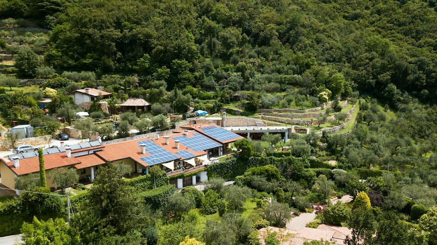 Loft among olive trees-stunnig view and peace