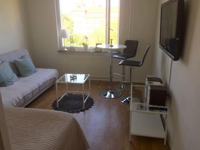 Central apartment in Stockholm - Stockholm - Apartment