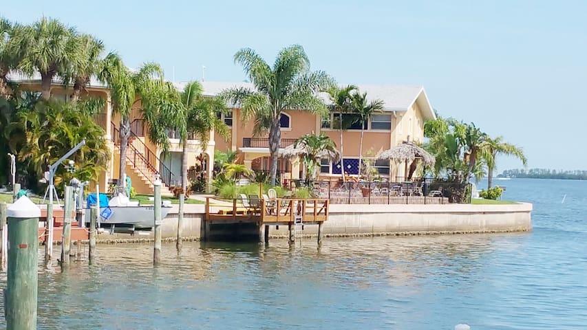 Coconut Villas 2677 D in Dunedin FL - Dunedin - Condo