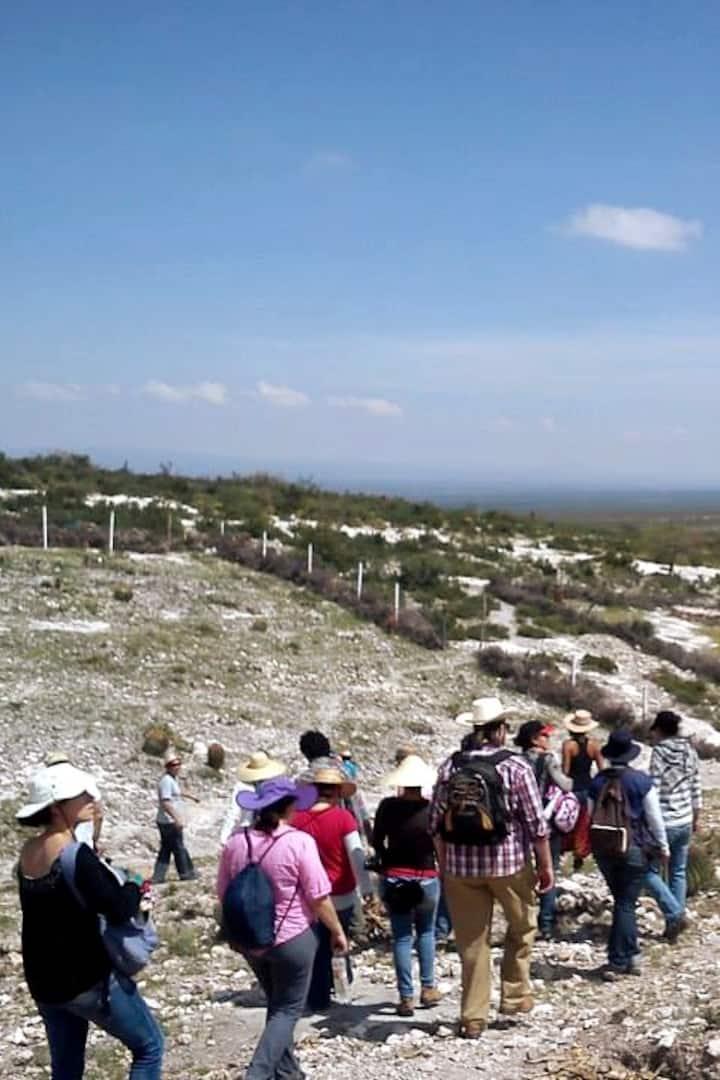 Llegando a la Zona Arqueológica.