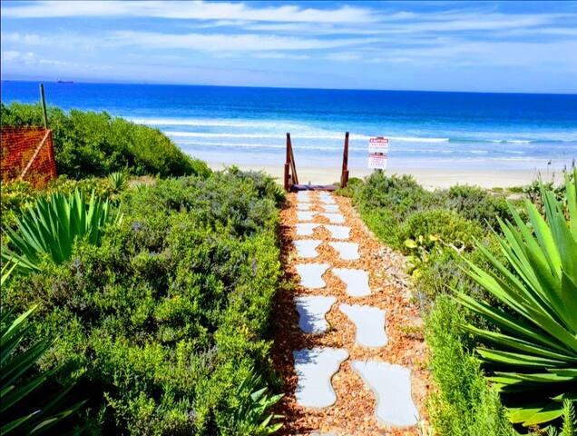 Pansy Cove in Diaz Beach - Clionella 4