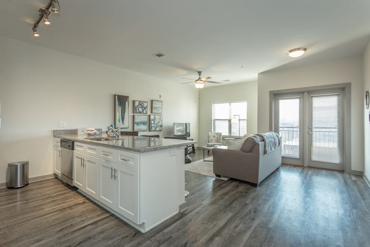 308~Brand New~PET FRIENDLY~Super Clean DOWNTOWN