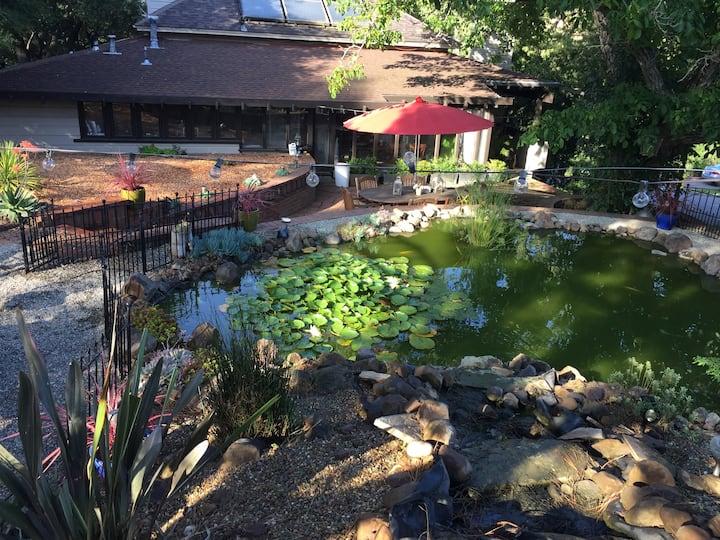 Ravenswood Koi Pond Retreat