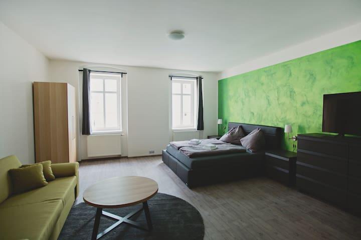 Pilsner Apartments - Pilsen - Apartmen