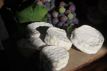 Les fromages sont délicieux en Ariège
