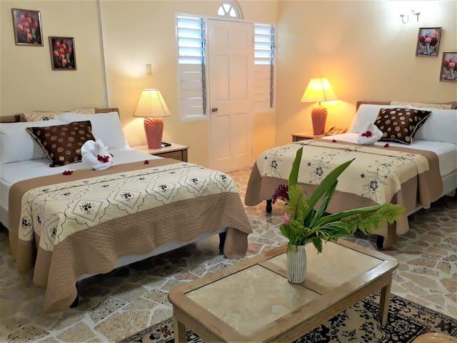 Paradise Inn Hotel Superior Double Room
