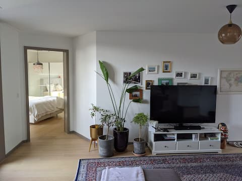 87 square flat in the middle of Zurich