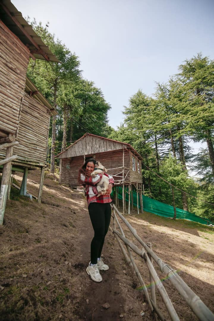 Fairy Tale Cottage In Kufri| Forest|Secluded