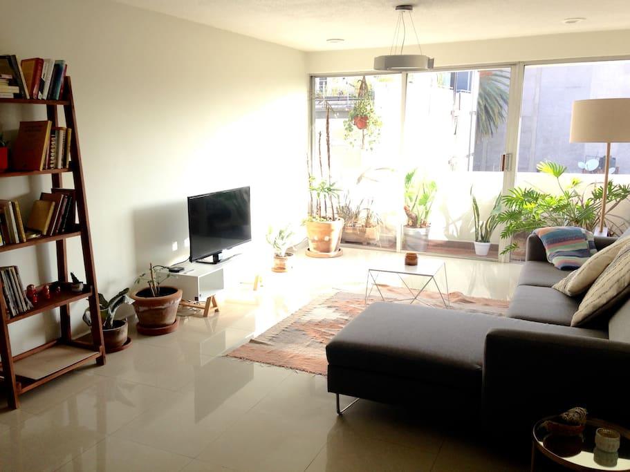 Living Room / Sala, lots of natural light