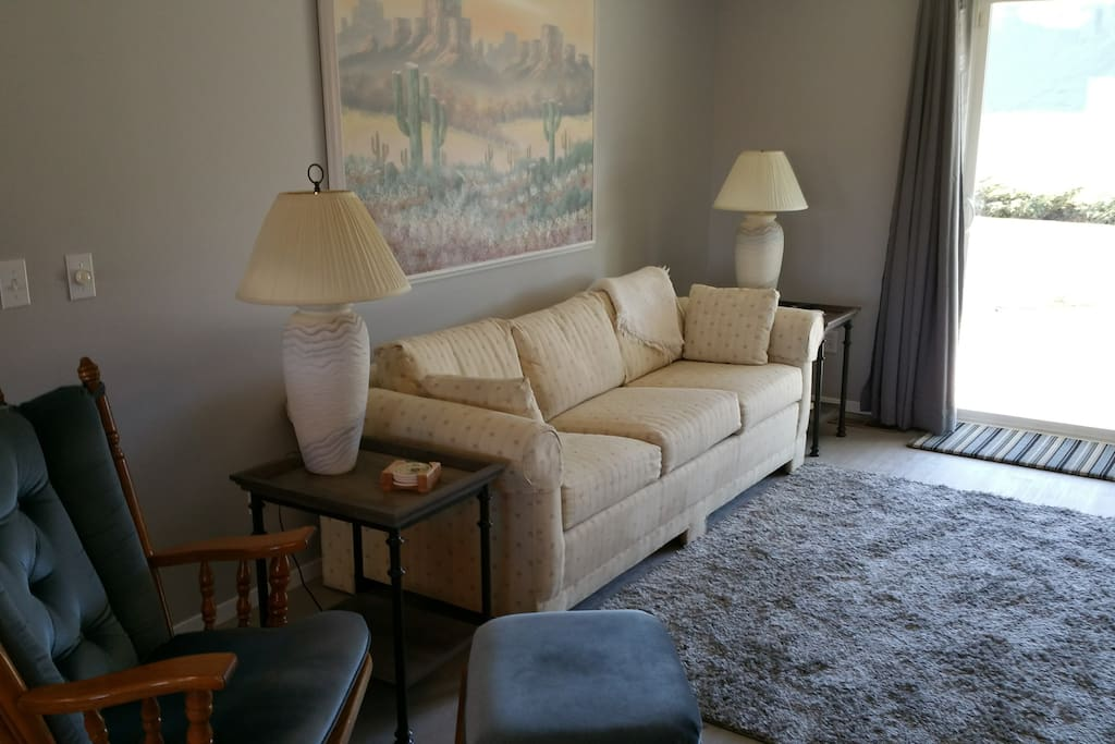 Hide-a-bed sofa in spacious living room.
