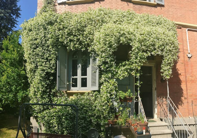 I 4 GATTI Bologna Guesthouse. Camera singola