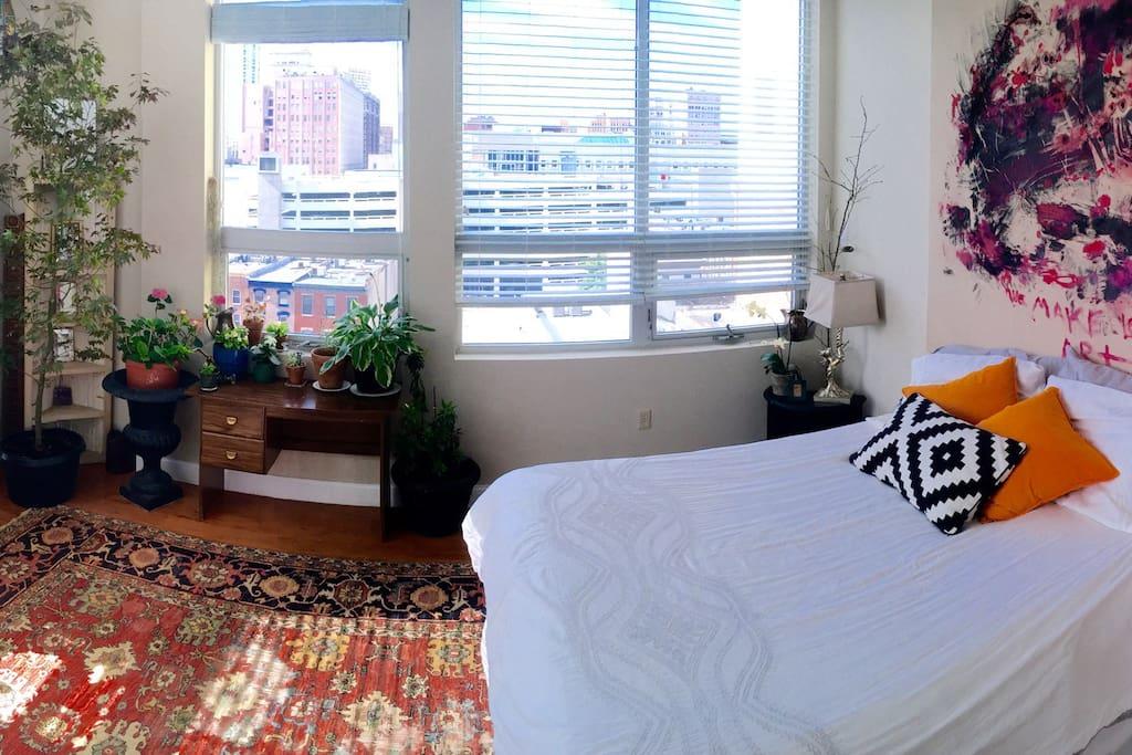 sunlit 1 bedroom w private bath apartments for rent in philadelphia