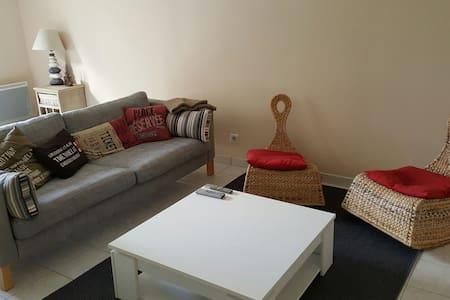 Appartement F2 de 45m² en plein Centre d'Orléans - Orléans - Pis