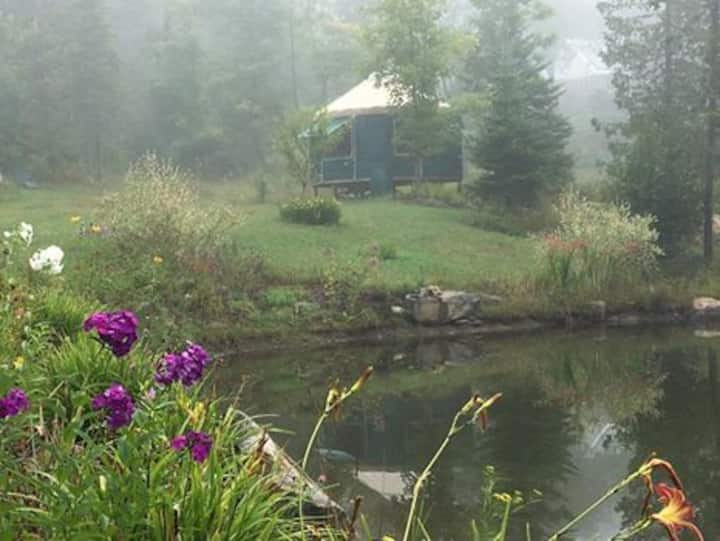 Birch Tree Acres  Yurt site