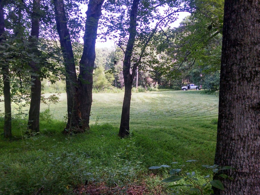 field for camping and parking. plenty of space in the woods too.