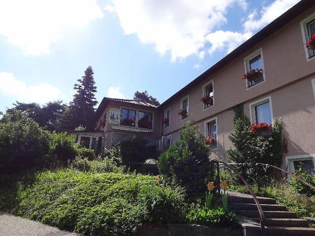 Schwarzwaldhotel Roter Bühl GmbH, (Mühlenbach), Einzelzimmer