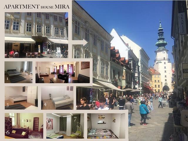 Apartment Mira 1
