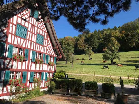 Experiência suíça localizada entre Zurique e Luzern