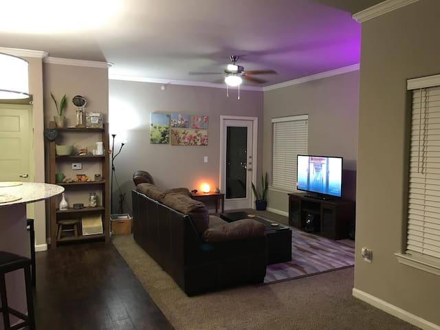 Stylish & Spacious ENTIRE 1BR Luxury Apartment