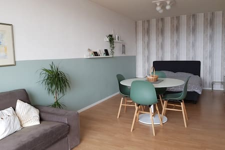 Cozy apartment with free parking and bicycles!