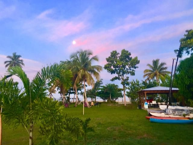 Two Individual Apartments! Tropical Beach Retreat