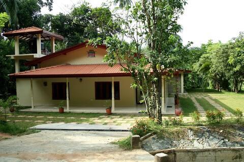 Home with a Green Garden