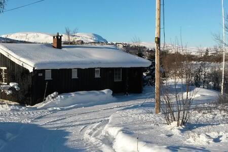 Hytte på Geilo/Kikut i nærhet til ski/tur terreng.