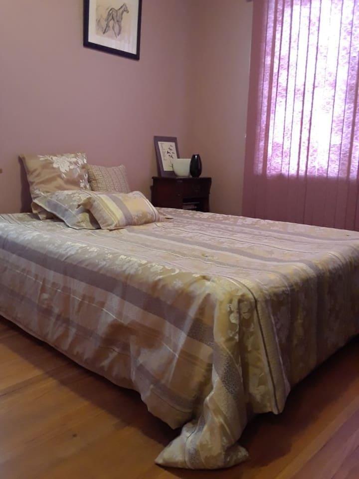 Bedroom 1 - queen air mattress