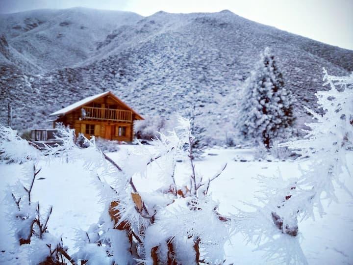 La Araucaria- Cabaña Andina
