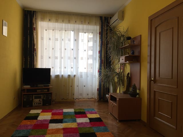 Cozy apartment in downtown. Wi-Fi - Kiev - Apartment