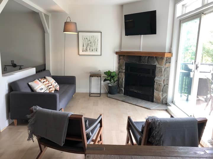 Cozy 2 Bedroom ski in ski out condo