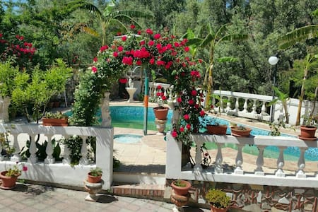 Appartamenti in villa con piscina - Bova Marina - 别墅