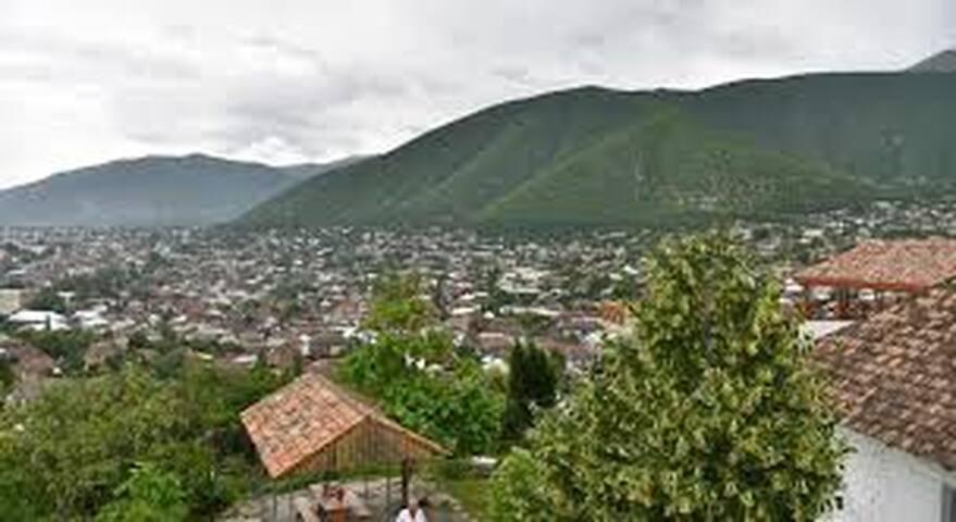 Zulya's place