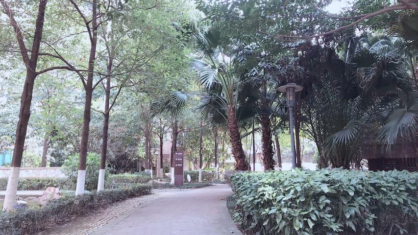 【沐光•星光1号】CBD/北欧风/城市中心/热带雨林小区/Ins风/葛洲坝