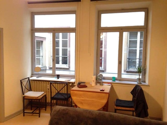 Beau studio bis 38m2 cosy ! - Strasbourg - Apartemen