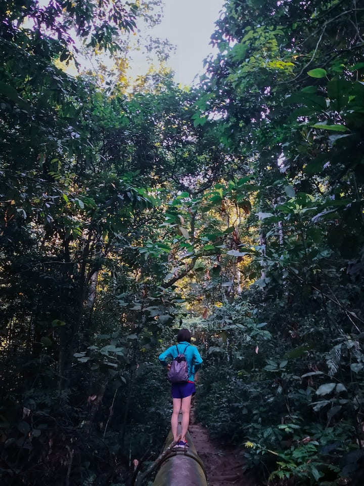 Feels lost in the jungle!