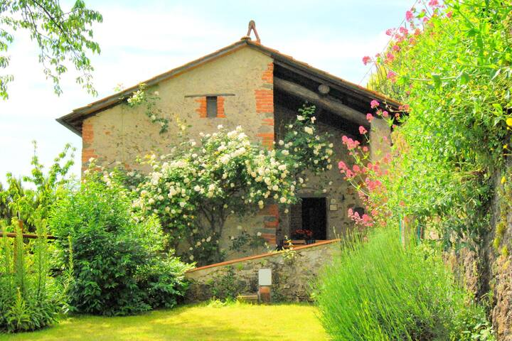 Spacious Holiday Home in Bagni di Lucca with Terrace