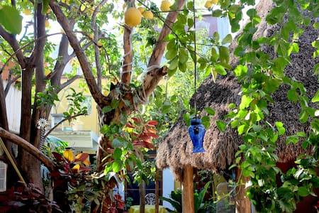 Casa Giron BnB - Oaxaca