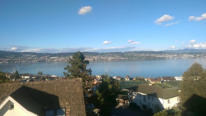 Cosy lakeview double bed room - Wädenswil - Appartement